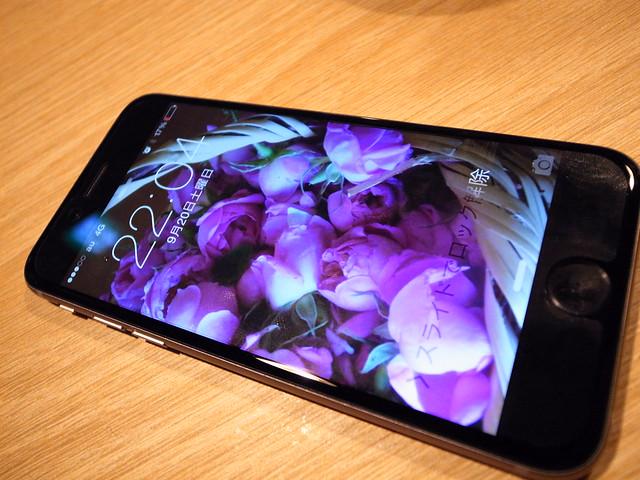 R1199607 iPhone6