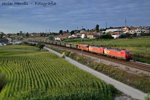 portugal train tren madera zug cp mercancias salreu maderero
