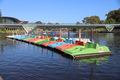 Pedal Boats on River Torrens