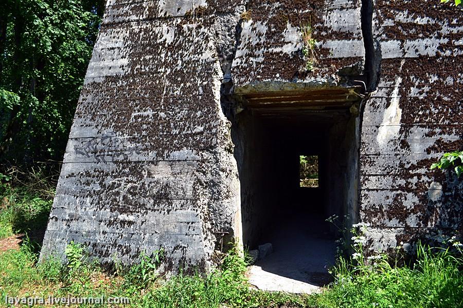 bunkeri02