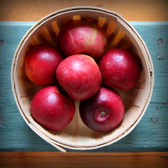Apples from Travis Organics
