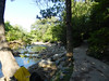 CreekAugust13-2014  :   DSCN2806