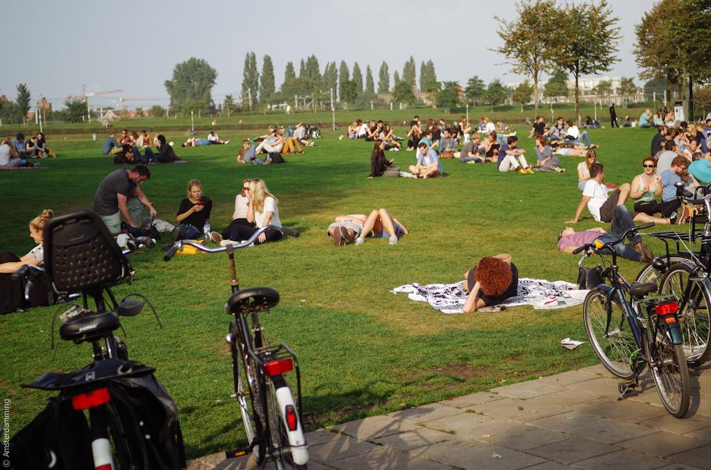 Amsterdam, UNSEEN 2014