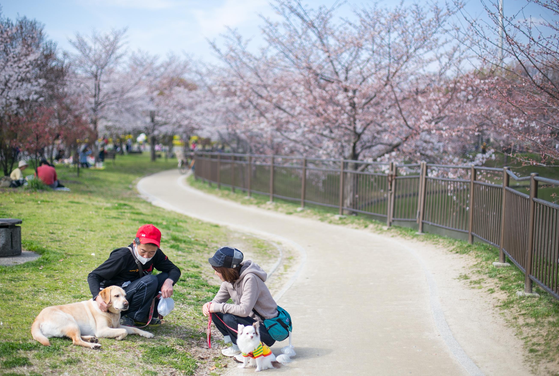 Tsurumi Ryokuchi Park Osaka