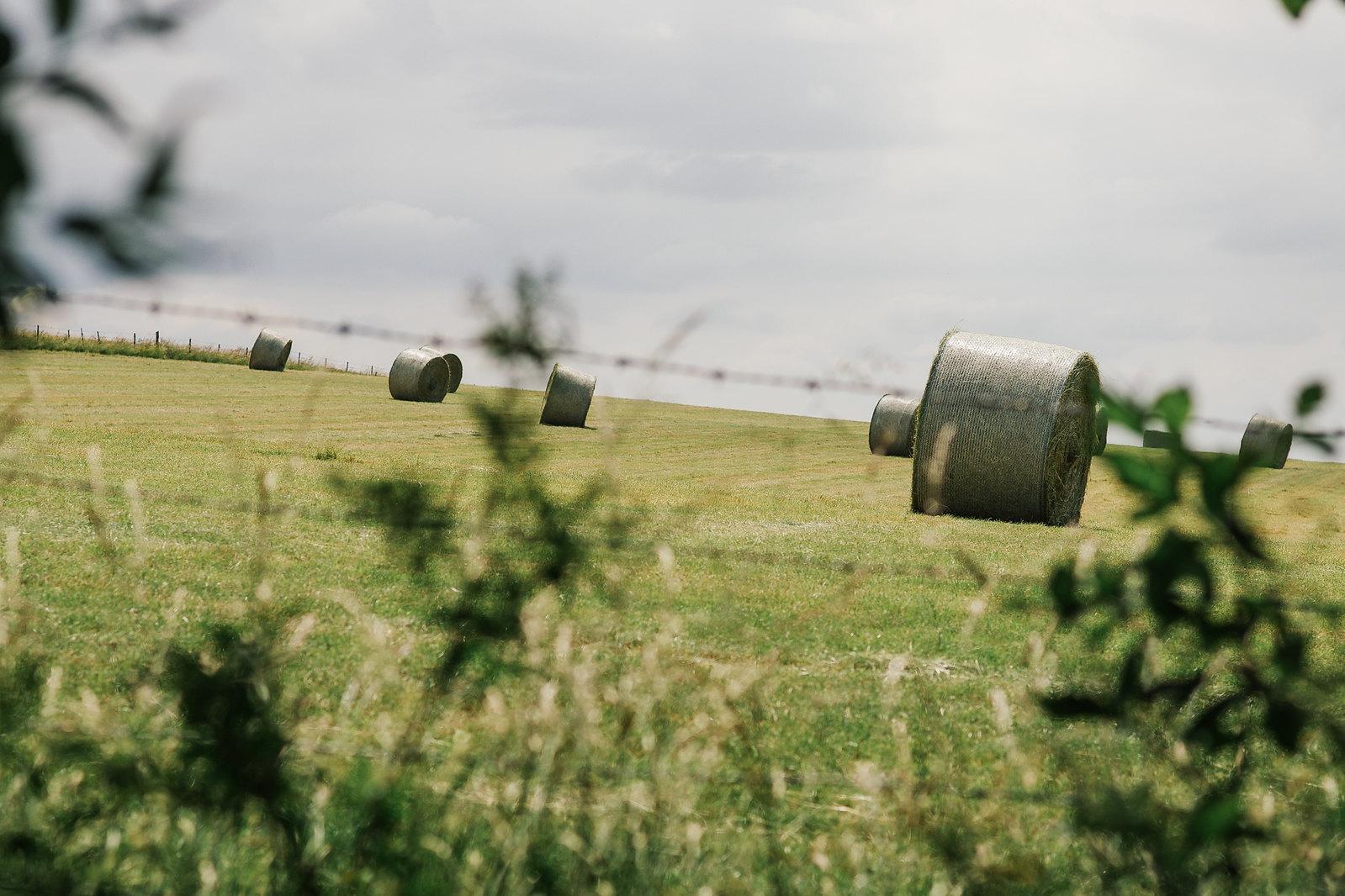 Tourisme vert dans la Meuse - de la Meuse à l'Argonne - À travers champs