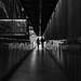 Ombres by Alex_Berto