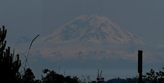 Mt Rainier, from Discovery Park