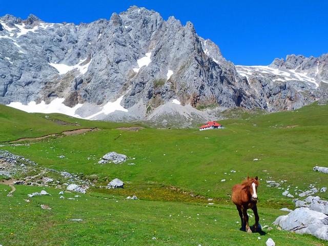 Fotografía de Picos de Europa (Cantabria) camino a El Áliva
