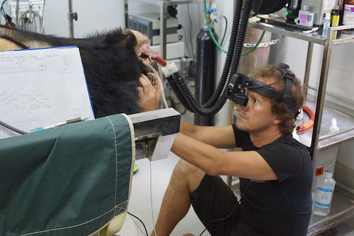 Joost_TiMap_Eye examination
