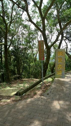 20140621-苗栗行 (20)