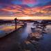 Fellow seascape photographer