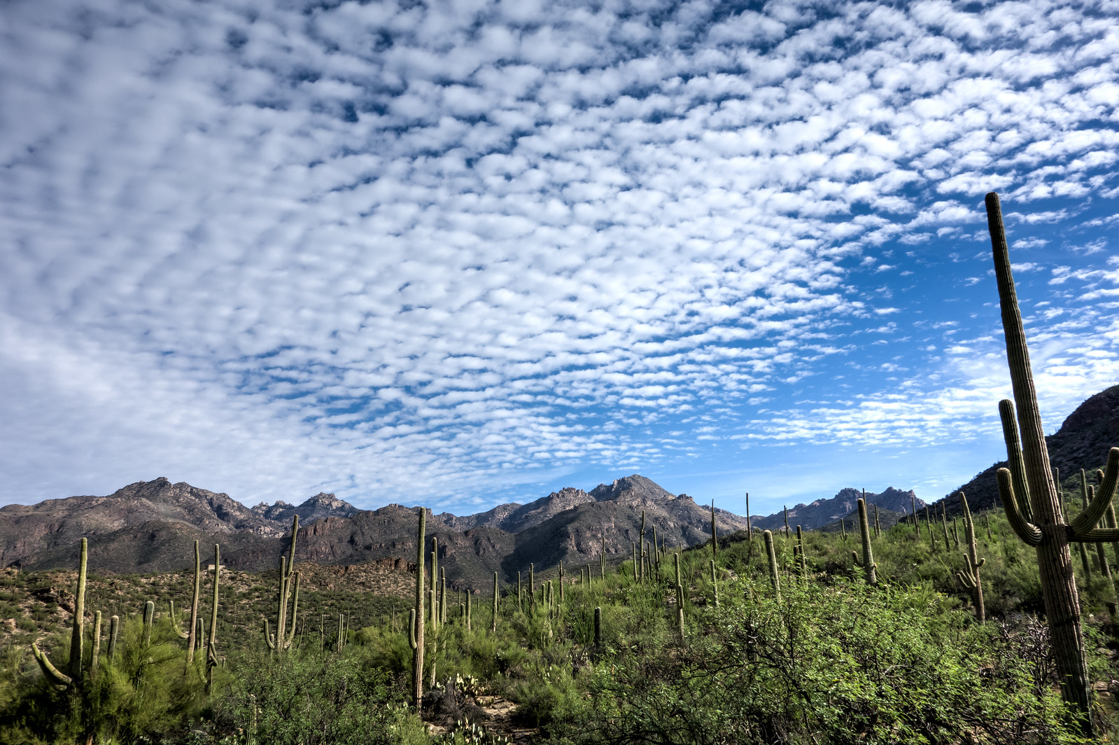 1407 Clouds over Sabino Canyon