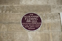 Photo of Alexander Fleming maroon plaque
