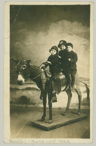 Three on a fake donkey