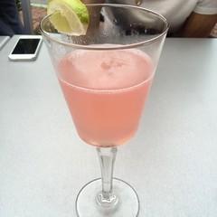 produce(0.0), food(0.0), distilled beverage(1.0), limeade(1.0), fruit(1.0), pink lady(1.0), drink(1.0), cocktail(1.0), juice(1.0), alcoholic beverage(1.0),