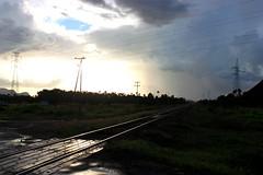 Rieles del tren