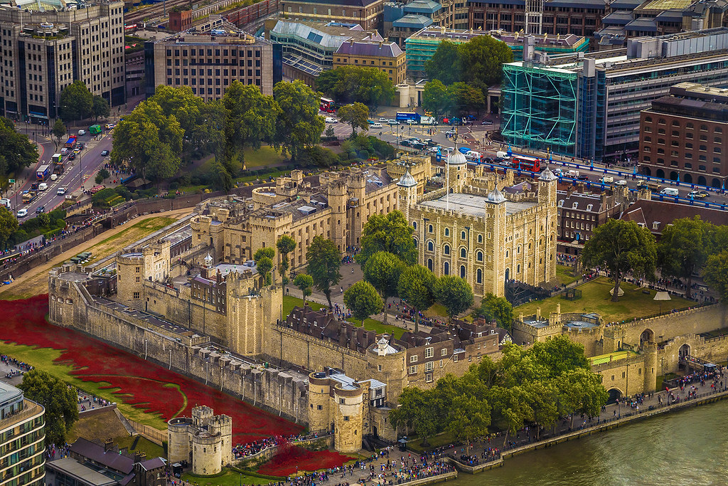 Red poppies to honour the British soldiers