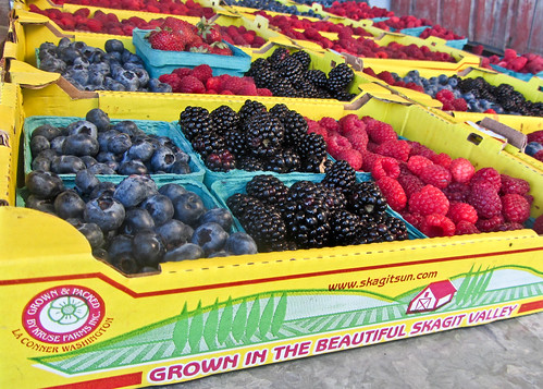 07-24-14 Skagit Berries
