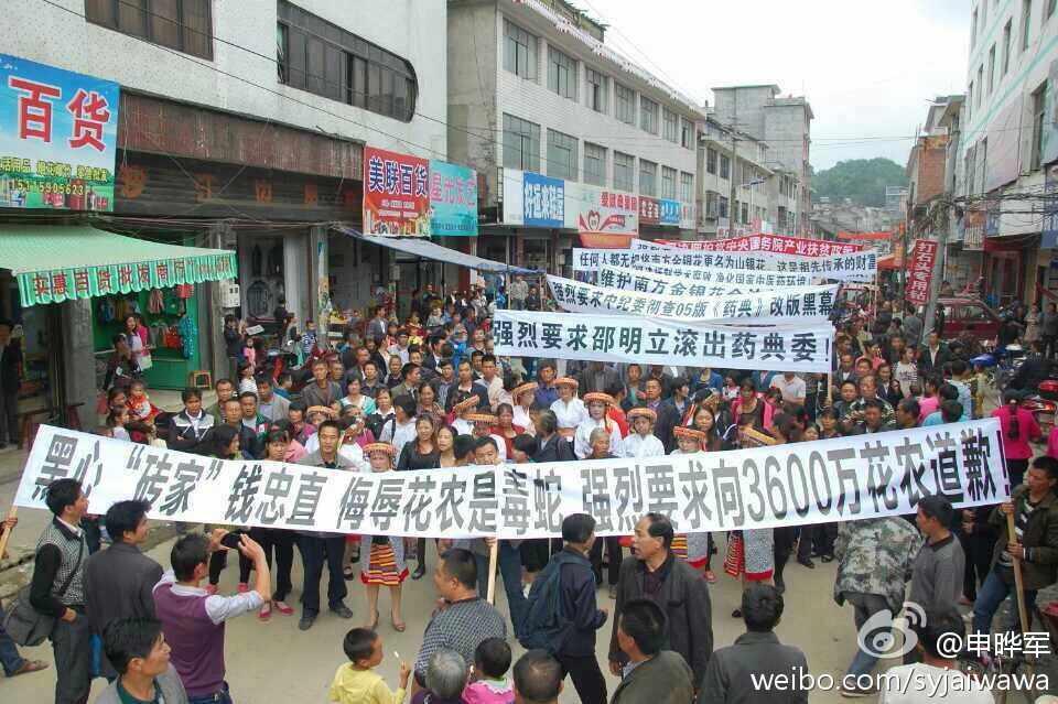 8月15日隆回小沙江抗议金银花改名为山银花游行示威
