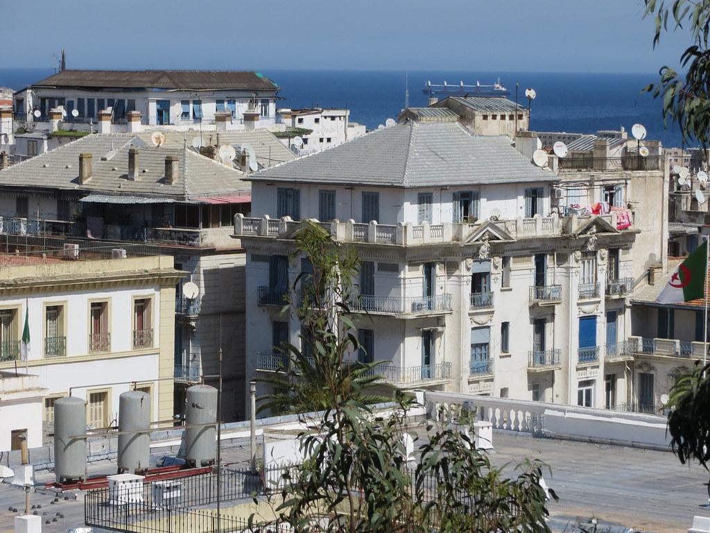 Alger 033