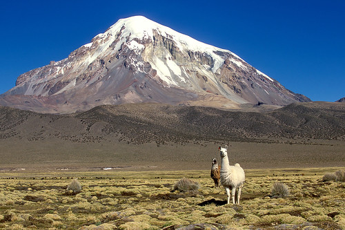 volcano bolivia sajama