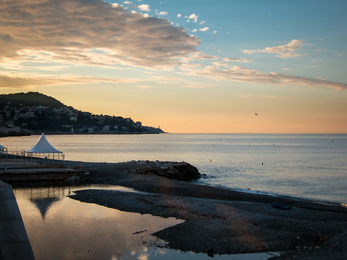morning pink blue sky orange man france color reflection bird beach water silhouette clouds sunrise landscape dawn flying nice mediterranean cotedazur waves pastel seagull horizon daybreak frenchriviera