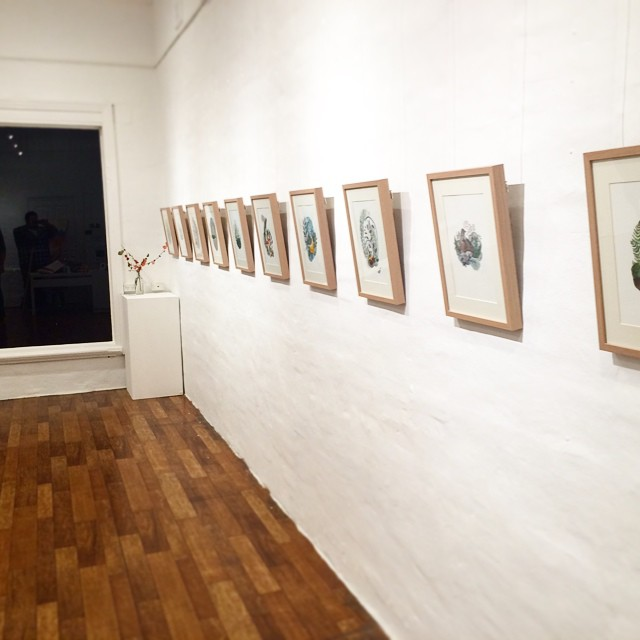 Busy Tuesday night hanging my exhibition Forest + Feather with @madiyoung86 .