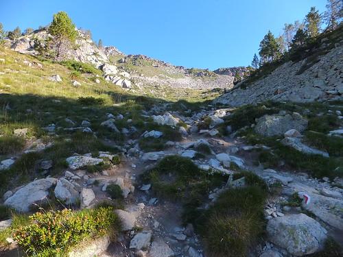Lac du Gourg de Rabas 203