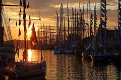 Tall ships races Bergen 1