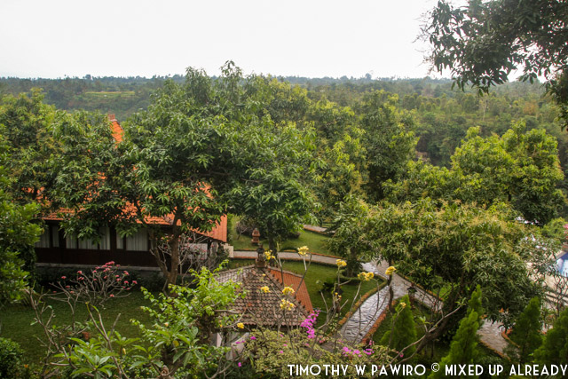 Bali - Shanti Natural Panorama View - The hotel complex via from above