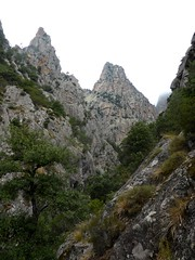 Descente du ravin en V de la Purcaraccia : sur le sentier de la RG, vue du ravin vers l'amont jusqu'à la confluence Purcaraccia/Nura