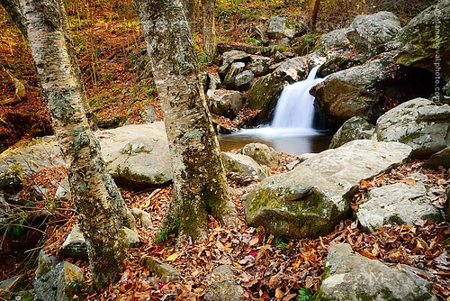 autumn trees fall colors forest landscape outdoors photography virginia waterfall nationalpark woods rocks unitedstates small drop hike trail va syria shenandoah darkhollow