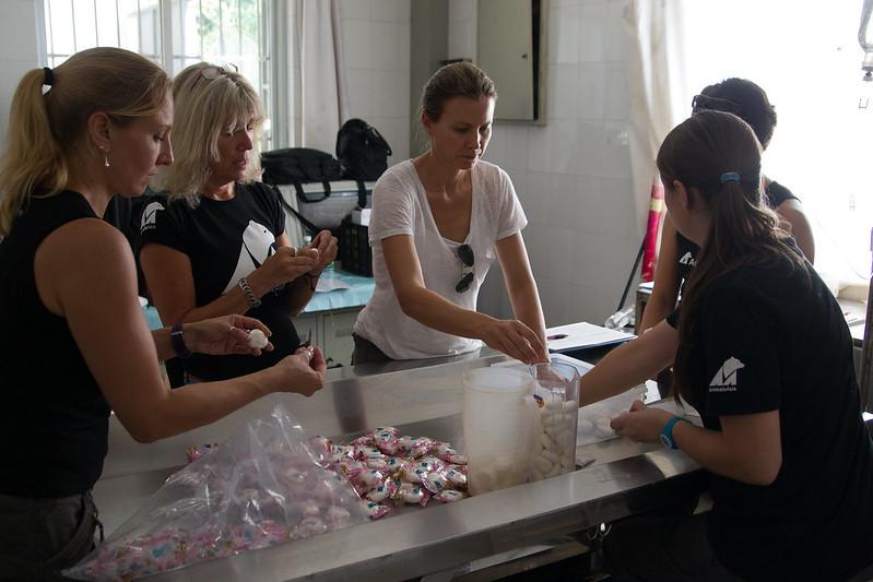 Staff prepare the bears' deworming medication