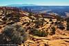 Mesa Arch Landscape