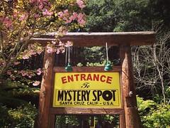 The Mystery Spot In Spring #mysteryspot