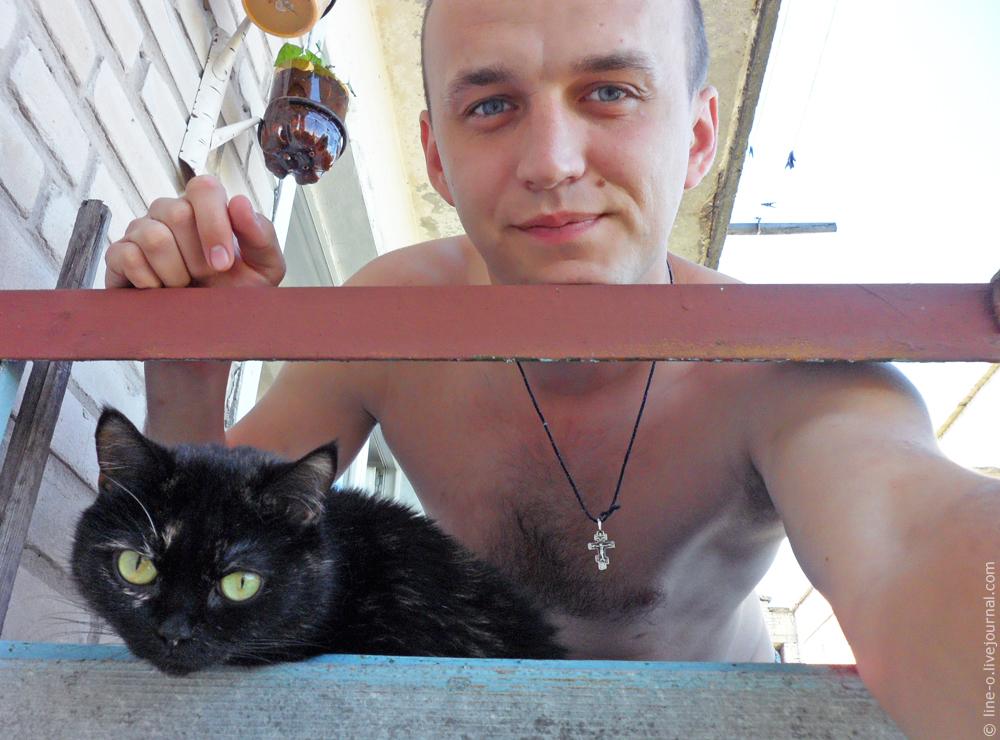 20140618_novik_cat_001