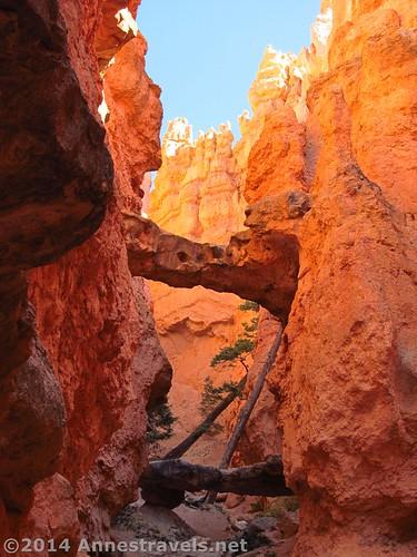 The Twin Bridge, Navajo Trail, Bryce Canyon National Park, Utah