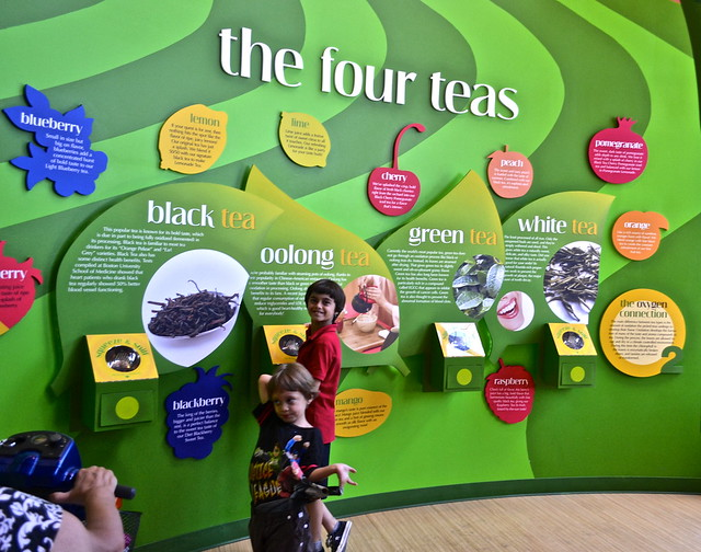 Tea Education Center - Turkey Hill Ice Cream Experience