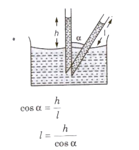 CBSE Class 11 Physics Notes Surface Tension
