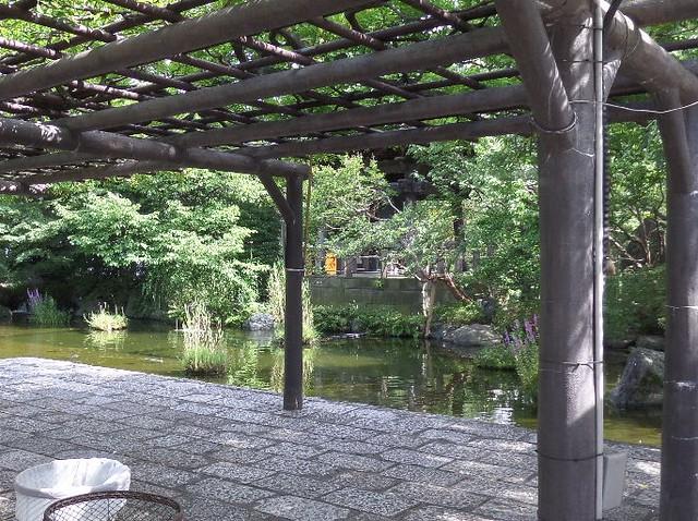 Garden Pond of Nishiarai Daishi temple