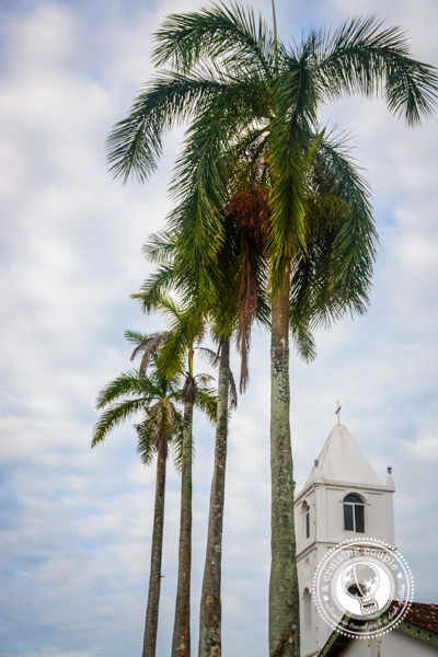 Church and Palm Trees Pedasi Panama