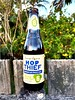 Hop Thief, American Pale Ale de James Squire