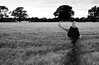 20140703-02b_Heading Out_Field Path - Cawston Rugby Warwickshire [b+w]