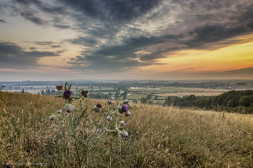 morning england sky sunrise landscape view unitedkingdom thistle sony hill oxfordshire a77 wittenhamclumps southoxfordshire littlewittenham sonyalpha andyhough slta77 sonyzeissdt1680 andyhoughphotography