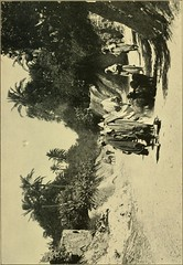 """Image from page 86 of """"The gateway to the Sahara; observations and experiences in Tripoli"""" (1909)"""