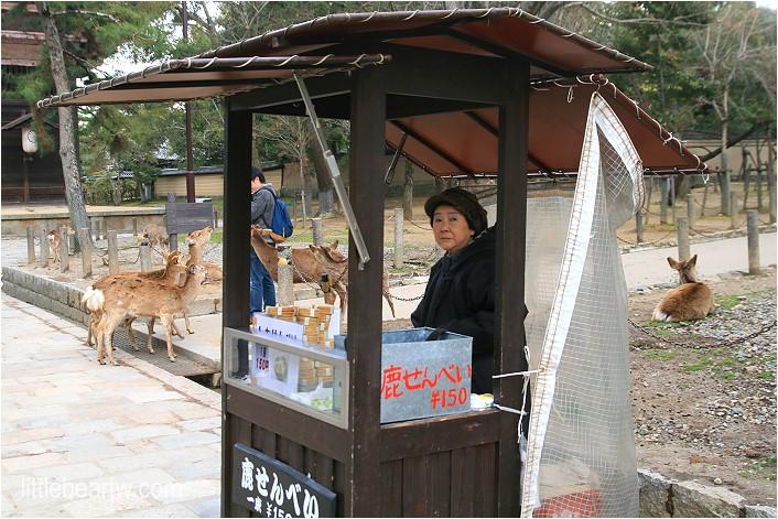 奈良公園-38