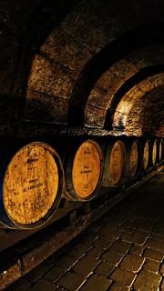 Cellars in Bodega El Fabulista in Laguardia