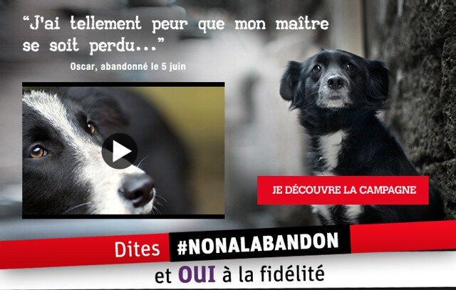 N'oubliez pas : même drame chaque année !! // Don't forget : same hurting thing each and every year !!