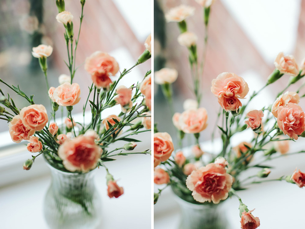 Carnations Dyptych