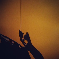 #Silhouette of a #Cat grabbing a #mouse. #Funny and neat #shadow of #kitten playing with its Toy. #Kitty is terribly fast and quite #furious. #Instapic #Nature